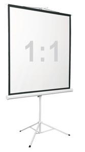 "Экран на штативе Digis DSKD-1108, формат 1:1, 135"" (248x250), MW, Kontur-D"