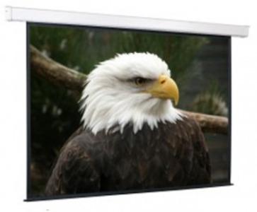 Экран с электроприводом Champion 180*180 MW